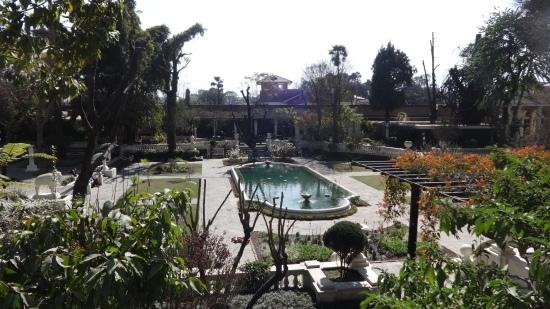 Le jardin des reves