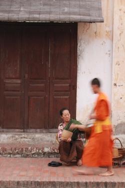 Laos - Luang - Les moines (16)