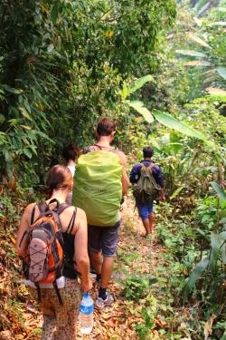 Les frenchy dans la jungle