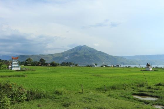 Vue du volcan de l'île