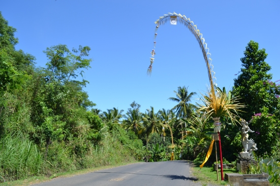 indo - bali - balade en voiture (9)
