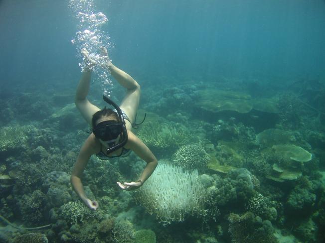 Aurore fait du snorkeling