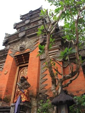 indo - tibo - ubud (4)