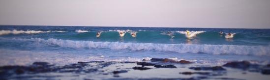 aus - new - les surfeurs (2)