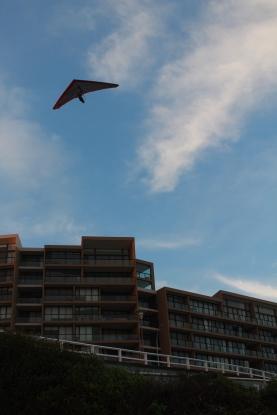 Les deltas-paneurs à la plage