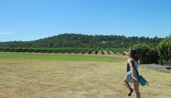 Aus - Newcas - hunter valley (28)