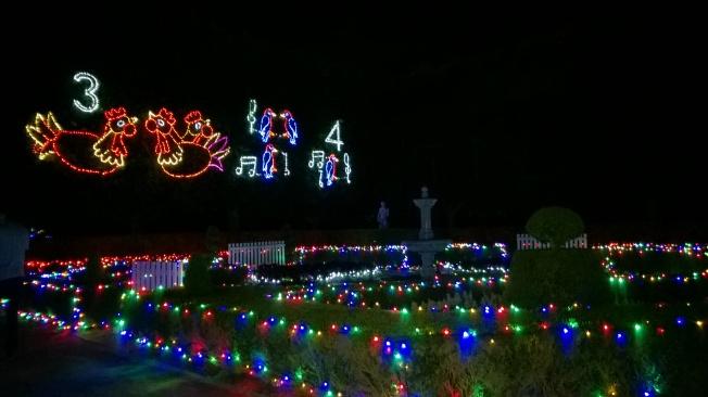 Illumination au Hunter Valley Garden