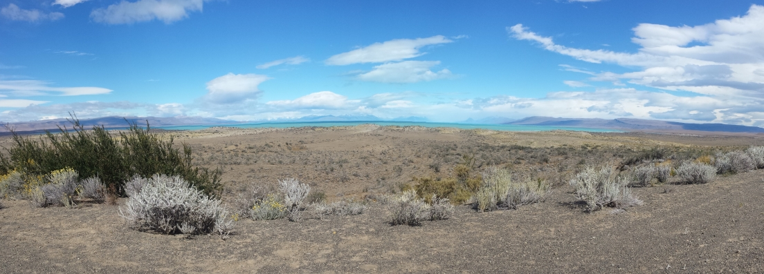 Arg - El Calafate - La Patagonie (2)