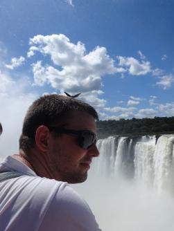 Arg - Iguazu - Titi (1)
