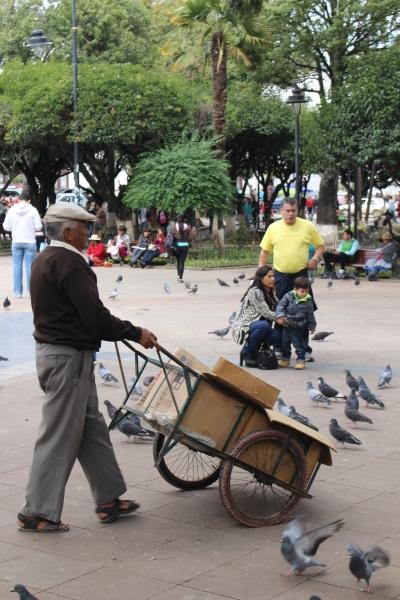La Plaza 25 de Mayo