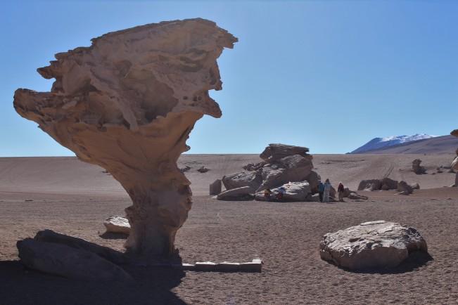 Bol - Tour Salar - J3 - Arbol de Piedra (11)