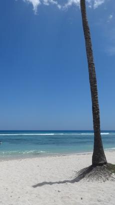 Cuba - Playa Giron - Playa los cocos (4)