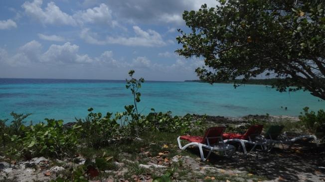 Cuba - Playa Giron - Punta Perdiz (4)
