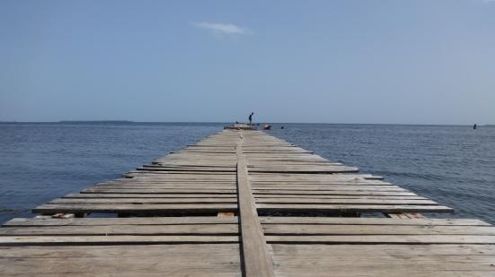 Cuba - Viñales - Balade Scoot Puerto Esperenza (9)