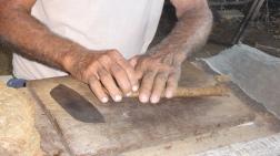 Cuba - Viñales - Plantation de tabac (3)