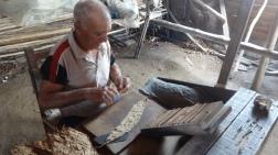 Cuba - Viñales - Plantation de tabac (6)