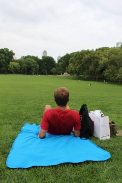 New York - Central Park (11)