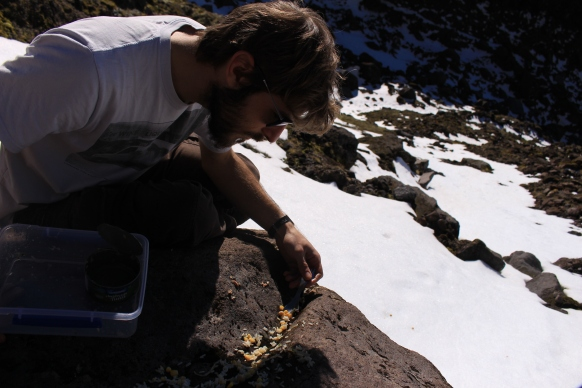 2016-07 - Taranaki - Trek Mont taranaki (20)