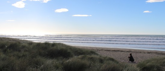 2017-04 - Hawke's Bay - Ocean Beach (9)