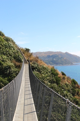 2017-12 - Welly - Escarpment Track (14)