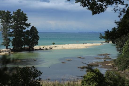 2018-02 - Tasman - Apple tree bay (4)