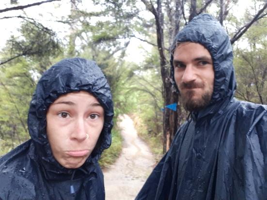 2018-02 - Tasman - Sous la pluie (1)