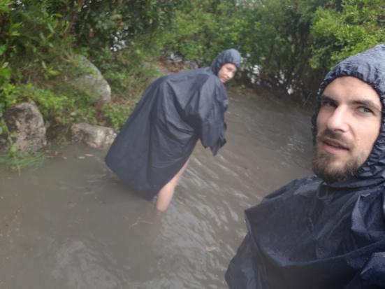 2018-02 - Tasman - Sous la pluie (6)