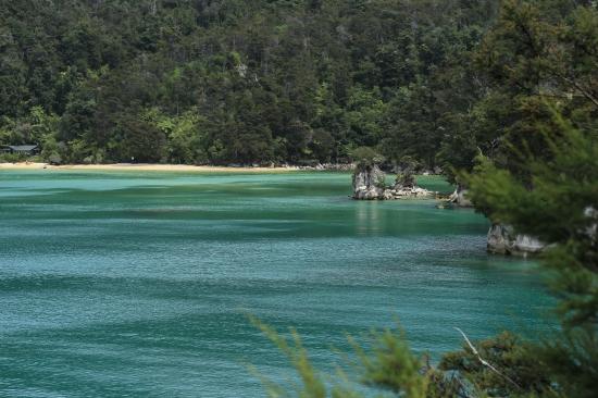 2018-02 - Tasman - Stilwell bay (11)