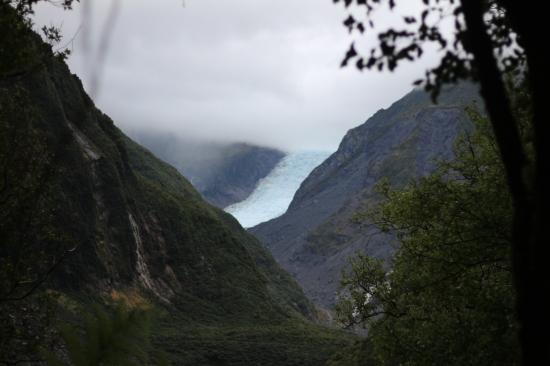 2018-02 - West Coast - Fox glacier (2)