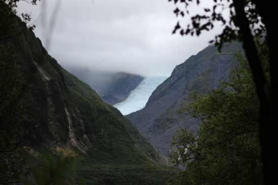 2018-02 - West Coast - Fox glacier (2)
