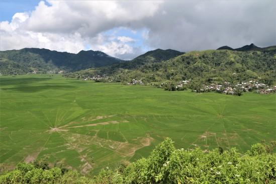 2018-02 - Ruteng - Rice field (1)