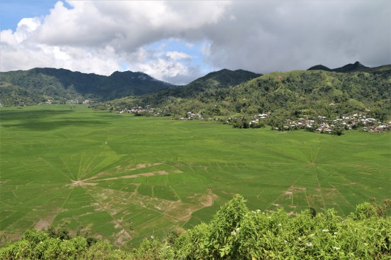 2018-02 - Ruteng - Rice field (1)
