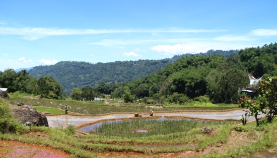 2018-03 - Toraja - Trek 28