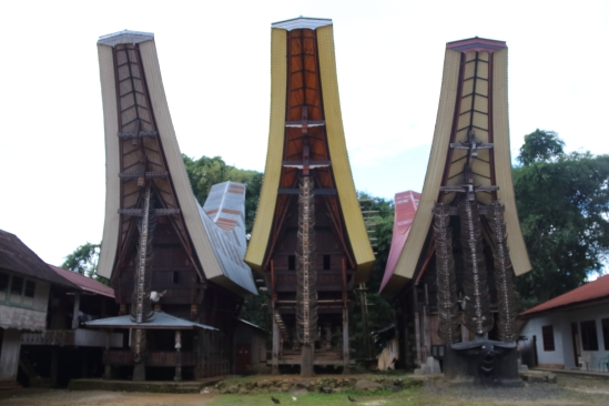 2018-03 - Toraja - Trek 36