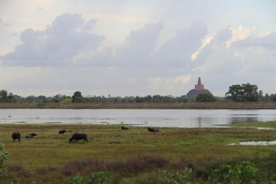 2018-04 - Anuradhapura - Balade J2 (5)