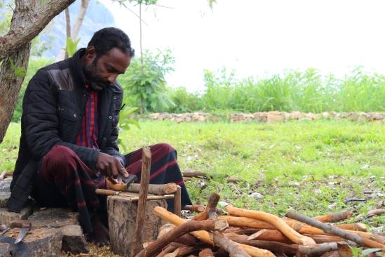 2018-04 - Haputale - Amba tea plantation (7)